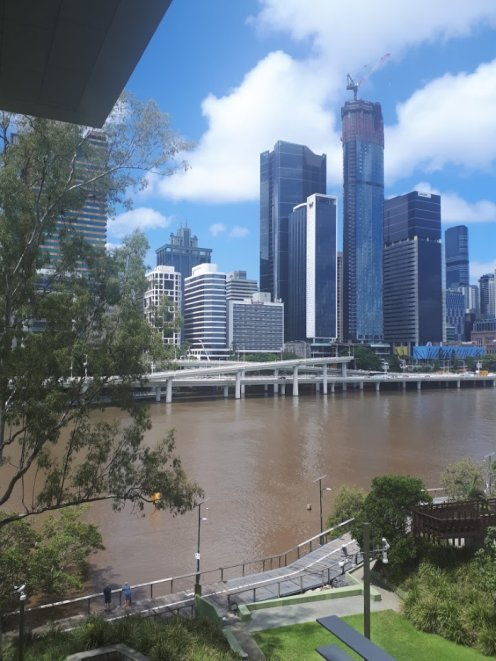 Things to Do in Brisbane - Exploring the City, Lone Pine, Wheel of Brisbane
