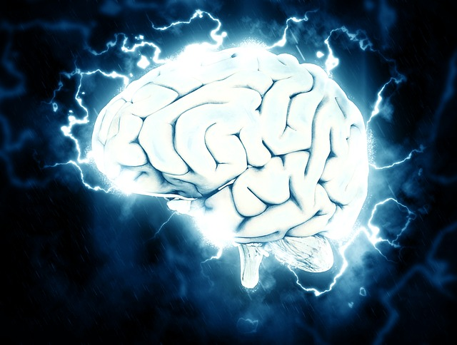 Everyday Ways to Take Care of Your Brain