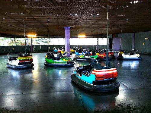 Bumper Cars Calaway Park
