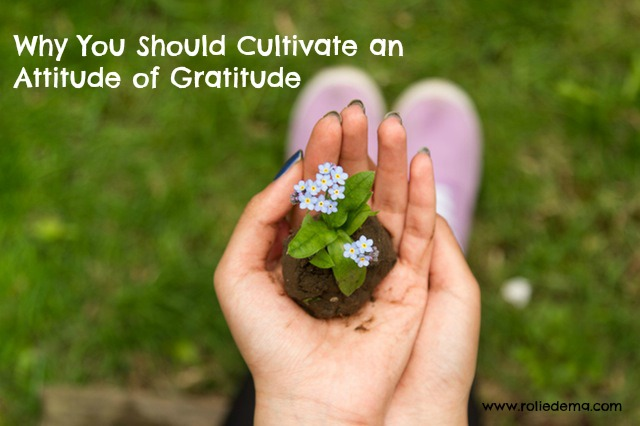 Always Cultivate an Attitude of Gratitude - good reasons to