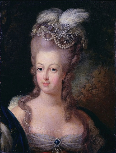 Queen Marie Antoinette of France: Cake, Her Children and her death - explained.