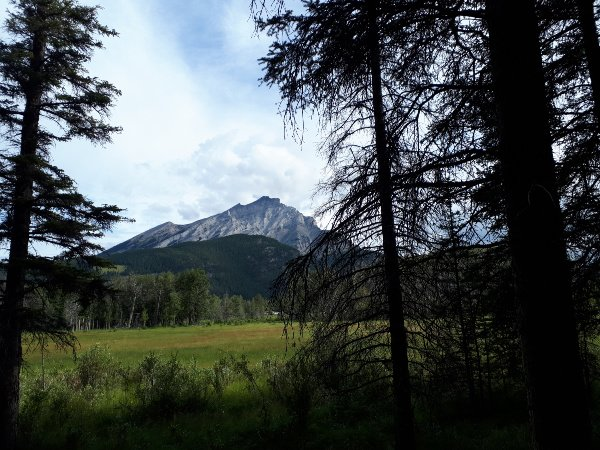 Mountain views on the Bow River Ride.