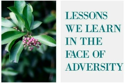Lessons We Learn In the Face of Adversity