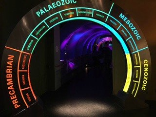 Colourful Tunnel At Royal Tyrrell Museum