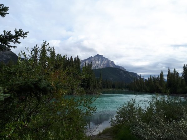 Views of the Bow River.